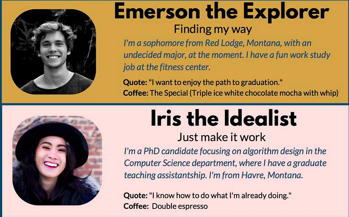 Student personas from Montana State University Libraries